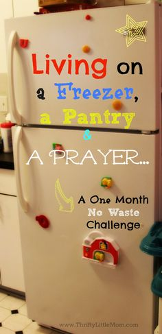 "Preparing for a one month ""no waste"" challenge to use up what's stored in a freezer and pantry! It won't be easy, but it's doable!"