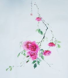 Amazing Artwork, Cool Artwork, Watercolour Flowers, Watercolor, Chinese Painting Flowers, Drawings, Board, Roses, Friday