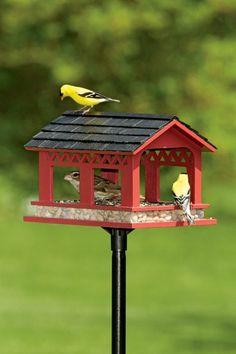 mangeoire pour oiseaux, objet minuscule, rouge et noir
