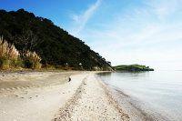 Auckland's top 10 secret harbour beaches