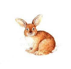 PRINT ..Rabbit ..PRINT art.. animal art  by happyapplebumblebee, $6.00