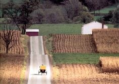 yellow buggy Amish are outside Penn State ; also the white buggy Amish live there Great Places, Places Ive Been, Beautiful Places, Places To Visit, Amazing Places, Lancaster County Pennsylvania, Pennsylvania Dutch, Amish Country, Country Roads