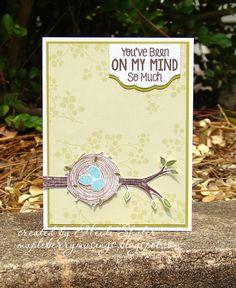 Mapleberry Musings: On My Mind