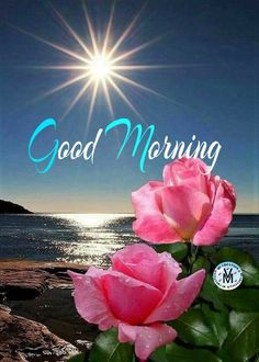 Good Morning Wishes Gif, Good Morning Roses, Good Morning Funny, Beautiful Morning, Birthday Wishes Quotes, Morning Quotes, Islamic Quotes, Caligraphy, Sober