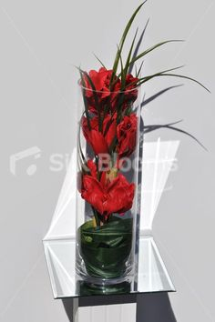 This red amaryllis vase display is ideal for decorating your home or for hotel foyers and reception areas. The real touch amaryllis and foliage all come fully assembled in a tall clear glass vase, ready to sit in place. This homewear floral arrangement measures approximately 60cm high at the tallest point.