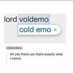 Voldemort is a cold emo Harry Potter Fandom, Harry Potter Memes, Percy Jackson, Scorpius And Rose, Be My Hero, Never Stop Dreaming, Fandoms, Phil Lester, Mischief Managed