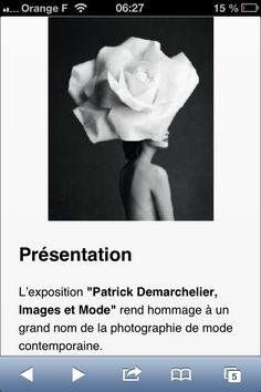 Patrick Demarchelier - Petit Palais  2008 Patrick Demarchelier expose à cette occasion quelques 430 photographies qui magnifient la photo de mode et subliment la beauté des femmes. Ces clichés de stars (Nicole Kidman, Julia Roberts), de top models (Christy Turlington) ou d'anonymes vous envoûteront par la beauté qui en émane.