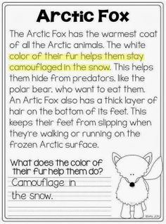 Arctic Animal close reading - 1st grade