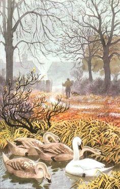 """Autumn rains"" by C. F. Tunnicliffe"