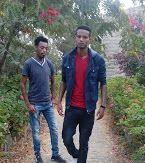 ashenafi kebede versus arega
