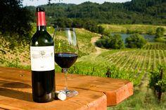 Aproveite seu intercâmbio nos Estados Unidos para conhecer as vinícolas californianas: http://www.studyglobal.net/portuguese/intercambio-curso-de-ingles-estados-unidos.htm