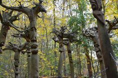 Familiengarten Eberswalde - Ausflugsziele Brandenburg • Ab Ins Gruene