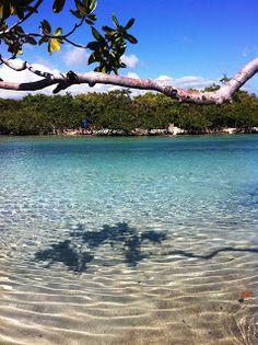 Caribe boricua Islas Guilligan, Puerto Rico 2013