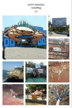 Wisata Bahari Lamongan (Lamongan's Seaside Theme Park) East Java - Indonesia  A theme park and local zoo. You can even pet the raindeer or riding the camel by the beach. Owned by a local tycoon.