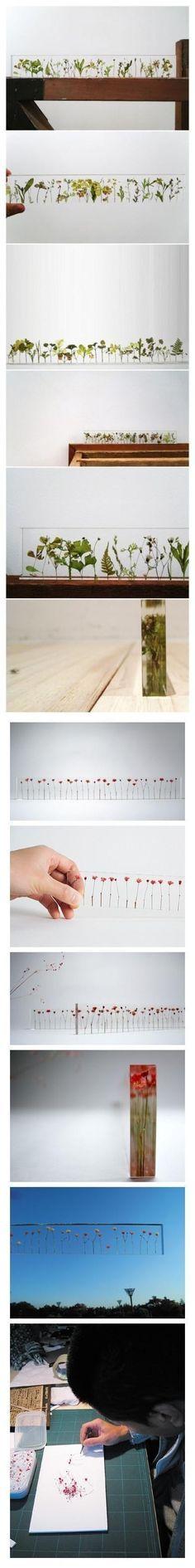Natural ruler. Designed by Norihiko Terayama