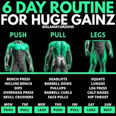 Push Pull Workout Routine, Push Pull Legs Workout, Leg Workout Plan, Push Workout, Workout Splits, Gym Workout Chart, Workout Routine For Men, Gym Workout Tips, Best Workout Split