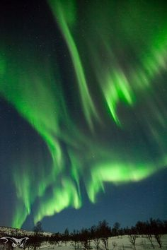 Aurora Borealis ~ Northern Lights Sure would love to see this.....