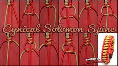 Cynical Solomon spine