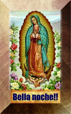 Our Lady of Guadalupe ~ Mexican Wedding Cookies Mexican Wedding Cookies, Blessed Mother Mary, Princess Zelda, Disney Princess, Our Lady, Animals And Pets, Catholic, Disney Characters, Fictional Characters