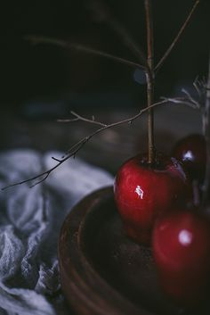wistfullycountry:  Black Tea Candied Apples by Eva Kosmas Flores | Adventures in Cooking by Eva Kosmas Flores on Flickr.