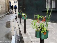 Necessary as they are to keep cars from blocking the sidewalk, anti\u002Dparking posts, or bollards, can be an ugly sight in a city. Parisian artist Paule Kingleur has commandeered some of the