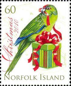 Norfolk Island  christmas parrot 2 2010