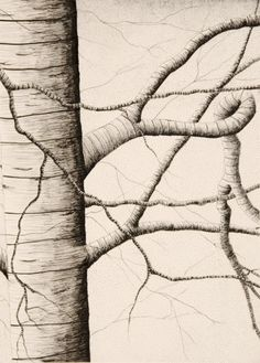 Cross Contour Drawing - Cross-contour lines seem to move along the surface of objects and emphasize the volume by wrapping around the object.