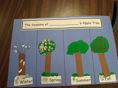 Seasons of an apple tree. Good idea for literacy and intergrated studies