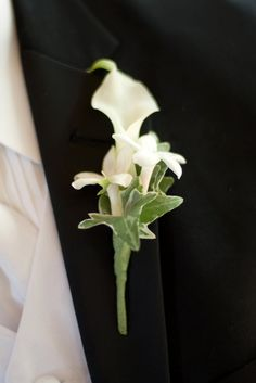 Mini calla, stephanotis and ivy boutonniere (classic, if you have cala lily as your flowers) Calla Lily Flowers, Lilly Flower, Prom Flowers, Wedding Flowers, Boutonnieres, Groom Boutonniere, White Boutonniere, Lily Wedding, Floral Wedding