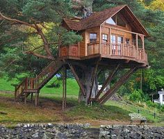 Top 3 Tree Houses ~ Life Tips And More !