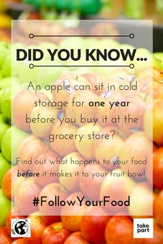 Want to find out more? Check out #FollowYourFood at takepart.com/follow-your-food