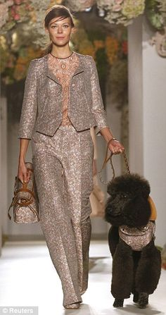 Doggy day out: Grey poodle Max stole the show as Mulberry unveiled its Spring/Summer 2013 collection