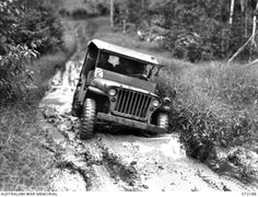 Kokoda Trail, New Guinea. 1944-04-12. A jeep of the 18th Australian Lines of Communication Area Signals negotiating a muddy area between Ilola and Owers' Corner. Jeeps traversed this section daily and were fitted with larger than standard tyres to cope with the terrain.