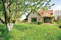 Ogród z kwitnącymi czereśniami #ogrod #czeresnie #kwiaty #trawnik