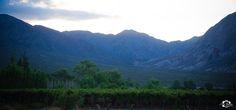 Si dios hubiera querido prohibirnos el vino, las viñas serían amargas y con espinas. Zonda. San Juan. Argentina