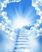 Trap in hemel —