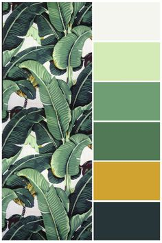 New bath room ideas green yellow 60 Ideas Green Things green yellow color palette Room Color Schemes, Room Colors, Colours, Green Color Schemes, Green Colour Palette, Nature Color Palette, Color Yellow, Green Colors, Tropical Colors