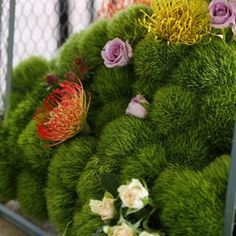 Amazing centerpiece on #mossmountainfarm #g2b15 #garden @stargazer_barn @americangrownflowers