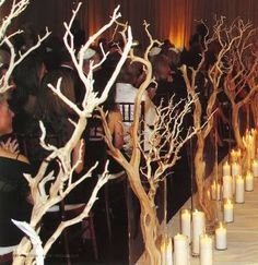 non-floral, forest-y church aisle decor - must think of a way to be embellished! (maybe could be painted or coated in very fine glitter for a winter wedding, etc.)