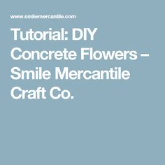 Tutorial: DIY Concrete Flowers – Smile Mercantile Craft Co.