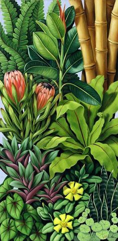 Foliage IIi Canvas Print / Canvas Art by Catherine Abel – Snehal Kantharia. Foliage IIi Canvas Print / Canvas Art by Catherine Abel Foliage Iii Canvas Print / Canvas Art By Catherine Abel Art Floral, Arte Art Deco, Fine Art Amerika, Impressions Botaniques, Jungle Art, Hawaiian Art, Garden Illustration, Pattern Illustration, Tropical Art