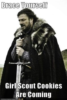 Brace Yourself  Girl Scout Cookies Are Coming