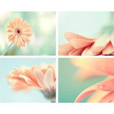 Spring Home Decor Photo Print Set -Spring Flowers, Pastel Fresh Aqua... ❤ liked on Polyvore