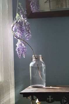 Wisteria by Amy Merrick.