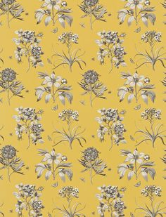 Etchings & Roses (DPFPET204) - Sanderson Fabrics - Three rare and beautifully engraved prints from Mulhouse have been faithfully reproduced in this simple but effective design. Shown in the Yellow colourway. Please request sample for true colour match.