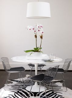 tulip and eames metal chairs