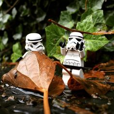 Playing with leaves #playing #leaves #outdoors #nature #rainyday #sunday #starwars #starwarslegos #starwarslego #lego #legostarwars #minifigures #minifigure #stormtrooperlife #stormtrooper #bob #iphonography #365project #day323