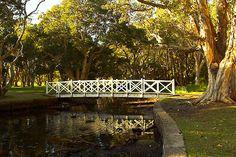 Centennial Park, Sydney, Australia.