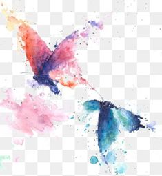 butterfly clipart,watercolor butterfly,drawing butterfly,butterfly,flying butterfly,drawing,butterfly,flying,ink painting?share=3 Butterfly Outline, Butterfly Clip Art, Butterfly Drawing, Butterfly Watercolor, Purple Butterfly, Ink Painting, Watercolor Paintings, Peacock Pictures, Butterfly Illustration