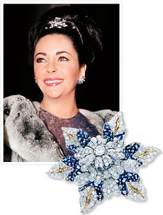 See how Elizabeth Taylor styled the Fleur de Mer brooch, now back at Tiffany & Co. Elizabeth Taylor Schmuck, Elizabeth Taylor Style, Violet Eyes, Tiffany Jewelry, Royal Jewels, Hair Ornaments, Jewelry Collection, Dame, Jewelry